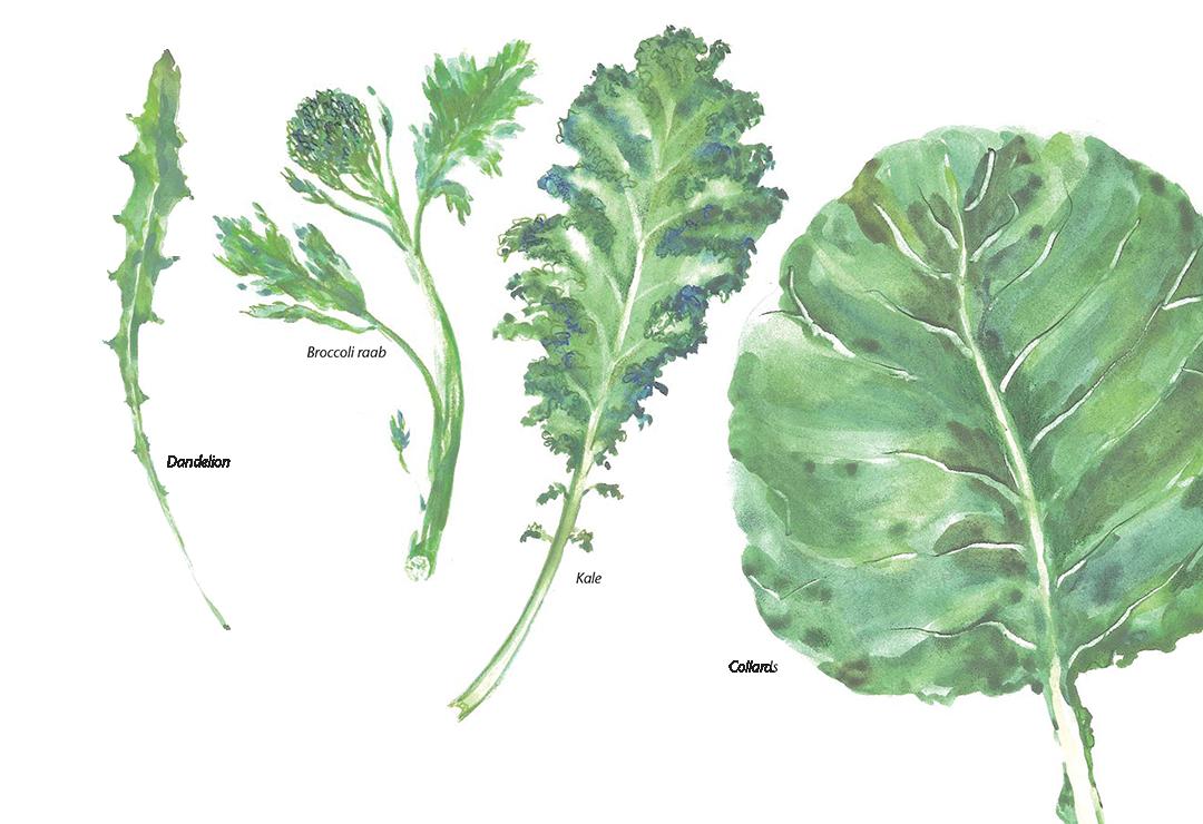 Greens - Chef Steven Petusevsky